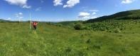 Open fields in West Virginia